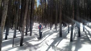 peaks-trail-300x169