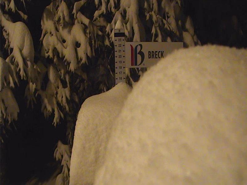 breck snow stake 11-5